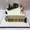 Train enthusiast cake